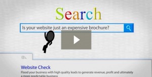 Lead generation for Business Websites